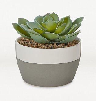 Artificial succulent in grey stoneware planter.