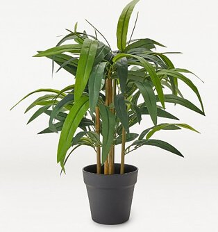 Wide leaf artificial bamboo tree plant in black pot.