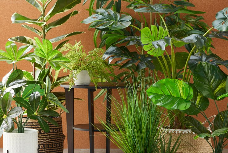Selection of artificial plants in front of orange wall.