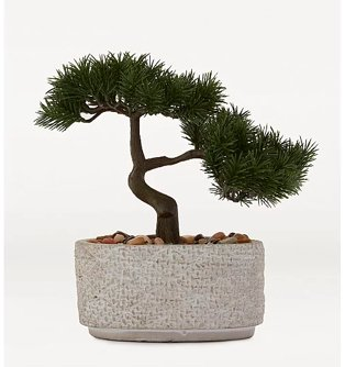 Artificial bonsai tree in natural cement pot.
