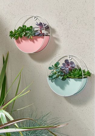 Pink and turquoise circular hanging planters containing purple flowers.
