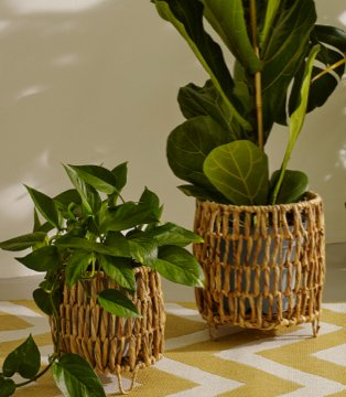 Two artificial plants in wicker baskets on yellow and white chevron table cloth.