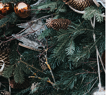 Christmas tree branches decorated with pine cones and golden baubles
